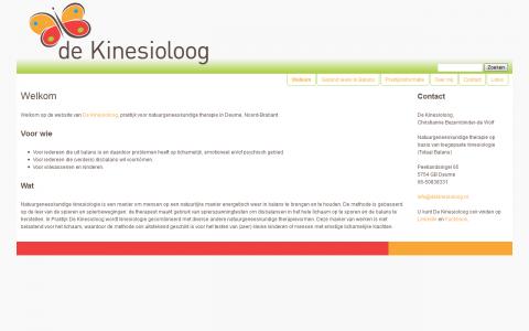 Website ontwerp De Kinesioloog door tsiis websites